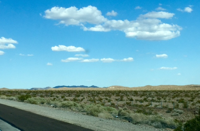 Mojave Desert landscape-photo by Kerry O'Brien